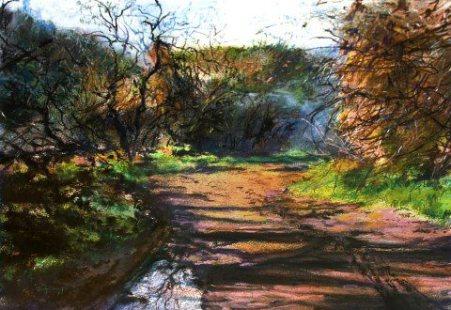 Artist: Vered TerryTitle: Judean Hills