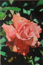 Artist: Uri Cohen Title: Pink Peach Rose