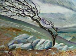 Artist: Heatherbell Barlow Title: Windswept Dartmoor