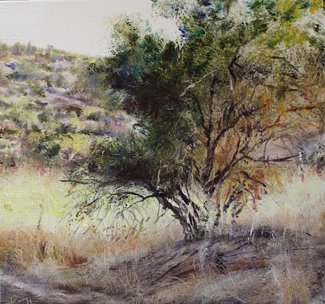 Title: Almond Tree 2013 Judean Hills Size: 30cm x 30cm