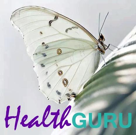 Health Guru Logo